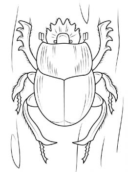 bug-coloring-pages-27
