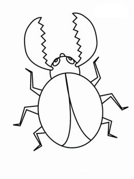 bug-coloring-pages-28