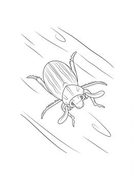 bug-coloring-pages-3