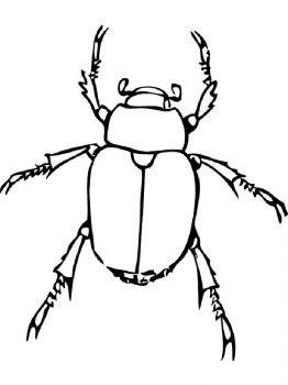 bug-coloring-pages-30