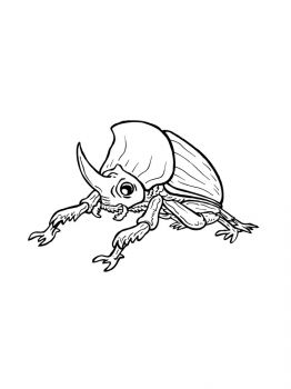 bug-coloring-pages-8