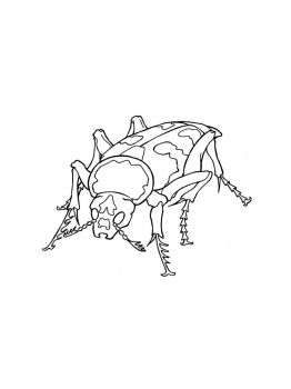 bug-coloring-pages-9