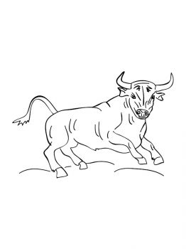bull-coloring-pages-21