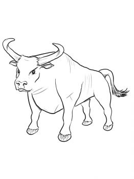 bull-coloring-pages-32