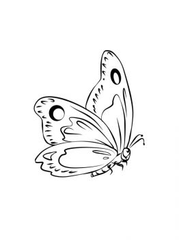 butterfly-coloring-pages-10
