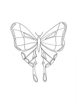 butterfly-coloring-pages-11