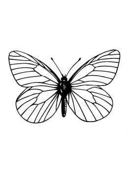 butterfly-coloring-pages-14