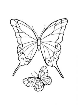 butterfly-coloring-pages-17