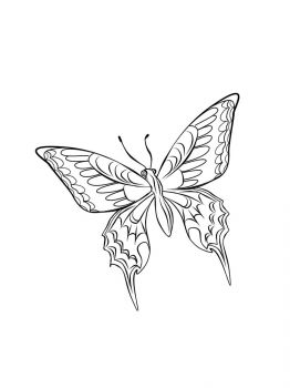 butterfly-coloring-pages-18