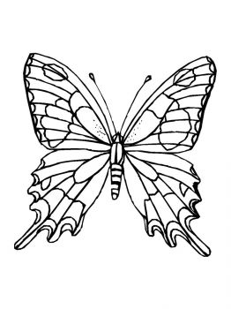 butterfly-coloring-pages-23