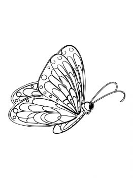 butterfly-coloring-pages-28