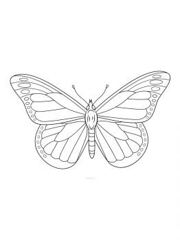 butterfly-coloring-pages-7