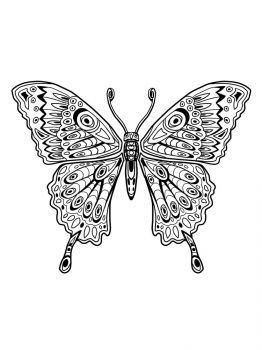 butterfly-coloring-pages-8