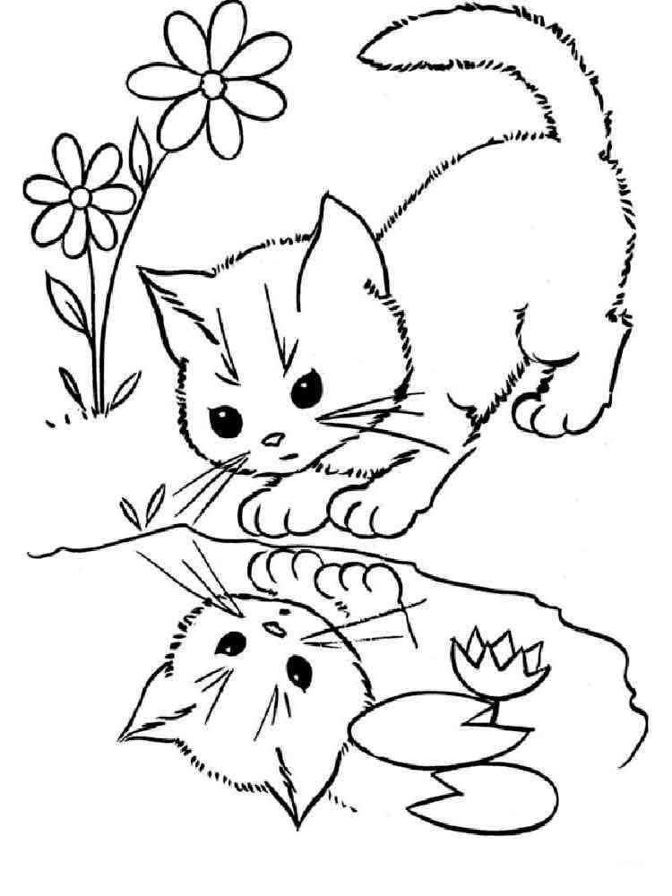 ausmalbilder katzen  malvorlagen kostenlos zum ausdrucken