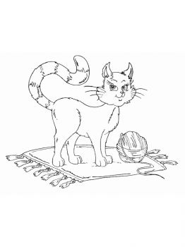 cat-coloring-pages-16