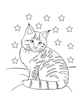 cat-coloring-pages-18