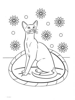 cat-coloring-pages-20