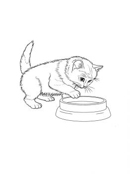 cat-coloring-pages-7