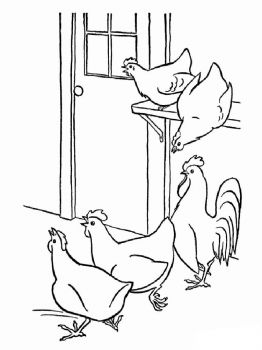 coloring-pages-animals-cock-16