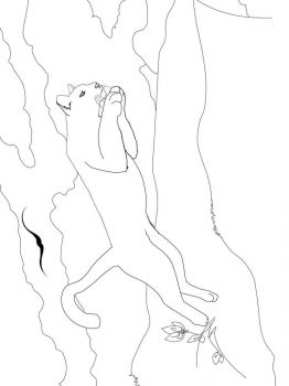 cougar-coloring-pages-10