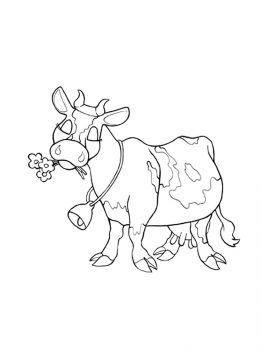 cow-coloring-pages-10