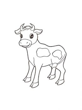 cow-coloring-pages-12