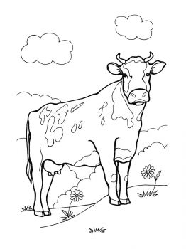 cow-coloring-pages-13