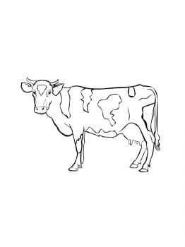 cow-coloring-pages-5