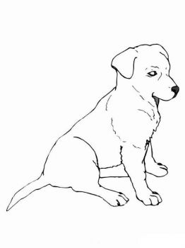 coloring-pages-animals-dogs-15
