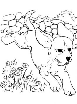 coloring-pages-animals-dogs-34