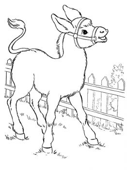 donkey-coloring-pages-9
