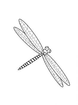 Dragonfly-coloring-pages-10