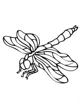 Dragonfly-coloring-pages-17