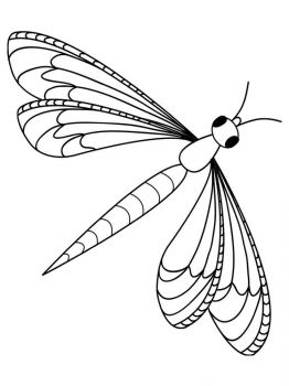 Dragonfly-coloring-pages-22