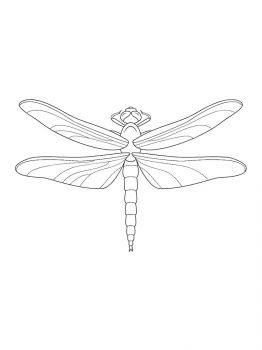 Dragonfly-coloring-pages-5