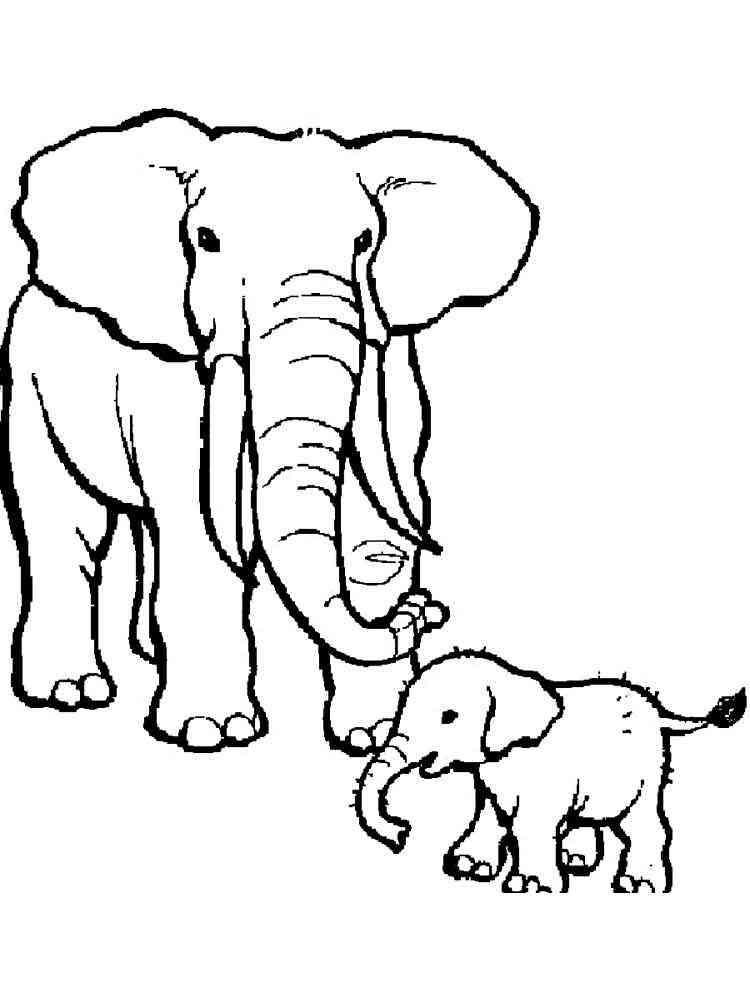 ausmalbilder elefant - malvorlagen kostenlos zum ausdrucken