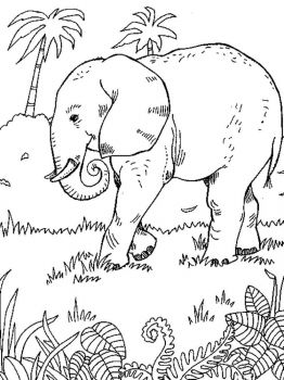 coloring-pages-animals-elephant-4