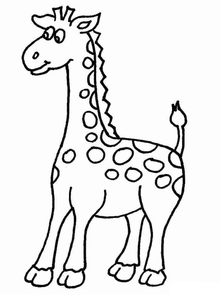 ausmalbilder giraffen  malvorlagen kostenlos zum ausdrucken