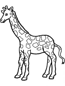 coloring-pages-animals-giraffe-13