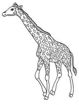 coloring-pages-animals-giraffe-8