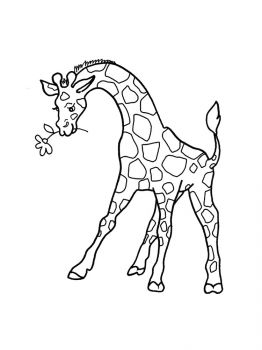 giraffe-coloring-pages-1