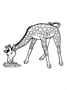 giraffe-coloring-pages-2