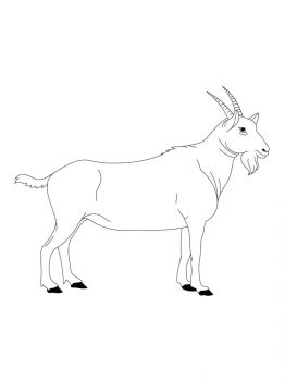 goat-coloring-pages-13