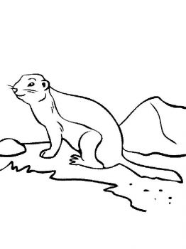 gopher-coloring-pages-5