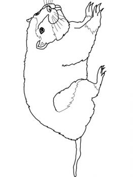 gopher-coloring-pages-6