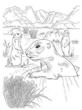 gopher-coloring-pages-8