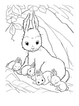 hares-coloring-pages-11