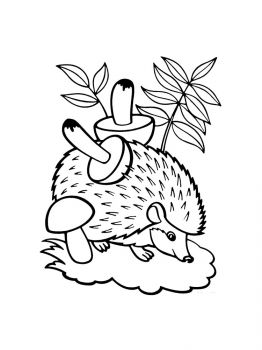 hedgehog-coloring-pages-15