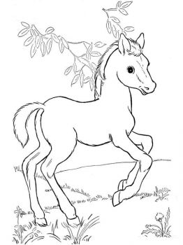 coloring-pages-animals-horse-2