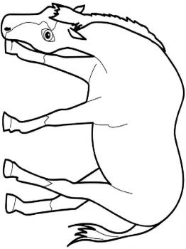 coloring-pages-animals-horse-3